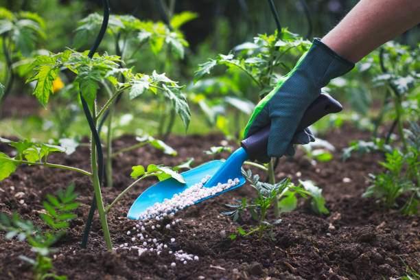 Fertilizer production